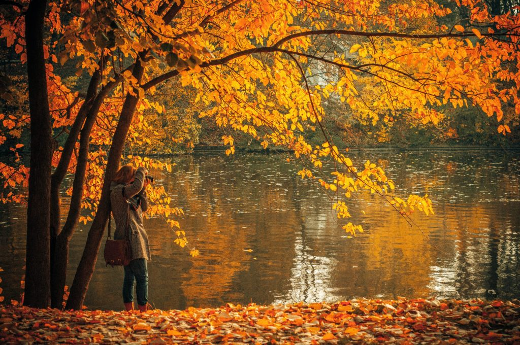 Woman standing by tree with fall leaves all around and a pond